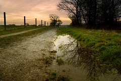 04/52: Yarrow Valley Country Park, Near Chorley, Lancashire (nickcoates74) Tags: explored a6000 chorley countrypark euxton ilce6000 january landscape puddle road sel1650 sony track winter yarrowvalley lancashire uk 52weeks explore