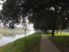 Un po' di nebbia - A bit of fog (trovado73) Tags: green passerella trees fog hdr river