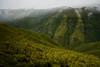 Madeira - green miles (zenofar) Tags: nikon d810 portugal madeira felsen rocks wolken clouds landscape landschaft felsformation grat abhang berg hügel tamron green grün ebene plateu