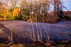frozen lake (fotonory) Tags: lake snow freeze frost see sonne sonnenschein sun sunshine park