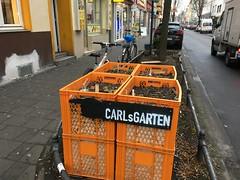 Carl's Garten