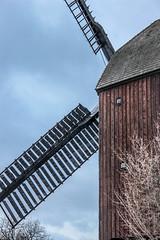 verdeckt (JuliSonne) Tags: windmill windmühle bockwindmühle berlin marzahn winter ländlich flügel korn müller mehl schrotgang holz architektur