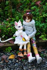 A discussion O3O (Athena Roseanna Tse) Tags: bjd balljointeddoll doll abjd pipos piposdoll charlotte marie fairyland minifee mnf luka lotus