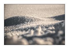 Nature (o_teuerle) Tags: nature bw blackwhite sw schwarzweiss natur schnee snow curves kurven light shadow winter nikon dof schärfentiefe