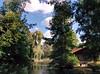 IMG_20150912_155952 (BG_Girl) Tags: софия врана sofia vrana tree trees pond cottage weeping willow sky cloud clouds дърво дървета езерце колиба лятна вила плачеща върба небе облак облаци