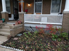 2017-03-01 16.38.37 (whiteknuckled) Tags: frontporch ouroldrowhouse porch front yard exterior deck decking railing outside
