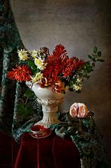 With aloe flowers (elisevna) Tags: aloe flowers red spring narcissus grapefruit citrus cup porcelain vase capodimonte capodimontevase drape stilleben stilllife натюрморт цветы алоэ dreamlikephotos
