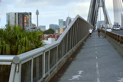 The cycleway and footpath over Anzac Bridge looking toward Pyrmont (Sydney NSW Australia) (nicephotog) Tags: anzac bridge cycle path pedestrian footpath rozelle glebe lilyfield sydney nsw pyrmont ultimo lane skyscraper cbd tower top skyline cityscape scenic panorama view apartment high rise centrepoint