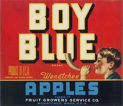 """Boy Blue • <a style=""""font-size:0.8em;"""" href=""""http://www.flickr.com/photos/136320455@N08/20850626323/"""" target=""""_blank"""">View on Flickr</a>"""