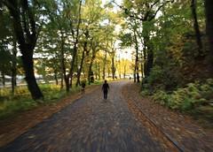In a hurry (blondinrikard) Tags: autumn fall gteborg gothenburg herbst otoo hst