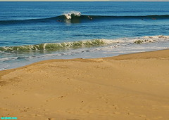 SR3303 (mcshots) Tags: ocean california sea usa beach nature water surf waves stock surfing socal surfers breakers mcshots reef swells combers losangelescounty