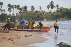 AJY_3082 (arika.otomamay) Tags: beach srilanka trincomalee