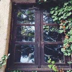 Window (Amorestfutui) Tags: old abandoned portugal window photography spiderweb janela fotografia almeida abandonada madeinportugal squarephotography instagramphotography