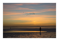 ANOTHER PLACE (Neil Shaw Images) Tags: anotherplace crosby merseyside liverpool antonygormley sculptures beach sea coast landscape seascape silhouette sky sunset