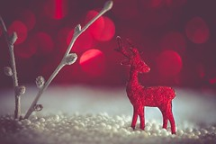 Red Christmas Reindeer (RoCafe Off for a while) Tags: macromonday holidaybokeh holiday bokeh mm macro reindeer felt christmas red white nikkormicro105f28 nikond600