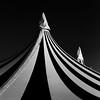 Circus Renz (Peter Kok) Tags: bw linescurves