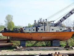 Ines (ENI 05613420) (Parchimer) Tags: schubboot pushboat towboat pousseur pchacz duwboot spintore empurradorfluvial binnenschiff tolómotorhajó pushertug eisenhüttenstadt