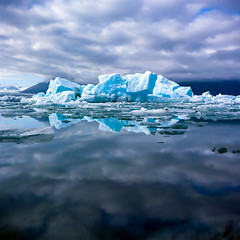 Jokulsarlon (Daniel Regner) Tags: jokulsarlon lagoon iceland europe mirror iceberg ice cold glacier glacial landscape landscapes kodak ektar 100 medium format twin lens reflex camera yashica c july 2016 daniel regner 6x6 120 film prime f35 handheld epson v500 scanner flatbed summer lake water reflection sky clouds icebergs