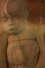 IMG_2232 (anthrax013) Tags: saint petersburg kunstkamera anatomy science medicine dead baby death necro necrophilia corpse abortion formalin
