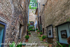 Minni art gallery ,Assisi Italy (Malcom Lang) Tags: mini gallery assisi italy contemorary art travel tra canoneos6d canon canonef2470mm canon6d canonef mal lang photography steps frames windows doorway pot plants moss wall outside