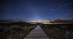 Boardwalk (Night Scapes) Tags: steverengers sodalake nightphotography nightsky nightscape