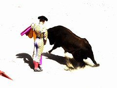 Andy Younes (aficion2012) Tags: arles novillada blohorn jalabert feria du riz france francia corrida bull fight toros toreaux toro bravo 2016 andy younes torero novillero matador toreador capa capote capear capeando