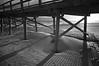 Into The Sunset   (IR) (F. Neil S.) Tags: beach oceananapier winter winds surf blowingsand sunset lines angles fence pilings crossties backlit blackandwhite blancetnoir monochrome fullspectrumconversion neewer 850nm filter sony nex6 emount dunes atlantic ocean saltwater