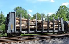 GLVX 24 (1) (Proto-photos) Tags: marionplywoodcorp connellsville pennsylvania pulpwood loaded bulkheadflatcar railcar freightcar train railroad rollingstock glvx 24 logs lo26 lp