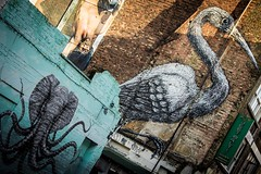 WideWalls (mario bellavite) Tags: peinture grafiche murales brushes alexisdiaz octophant animals hanburystreet culture bengali bricklane widewall wall london artist graffiti art street streetartist roa thesacredcrane crane sacred