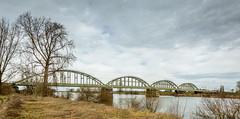 spoorbrug pano (stevefge) Tags: maas nbrabant ravenstein panorama landscape bridges rivers trees bomen architecture arches bogen nederland netherlands nl nederlandvandaag reflectyourworld