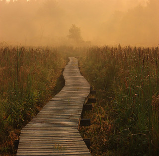 Orange Mist on the Boardwalk