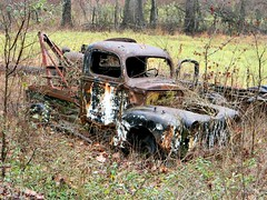 Tow or Not to tow (Dave* Seven One) Tags: rot abandoned overgrown truck junk rust decay rusty pasture forgotten dodge decaying rotted wrecker