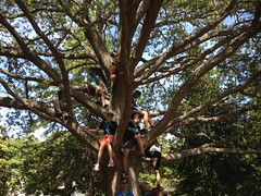 Scouts having fun