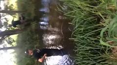 video-1442651020.mp4