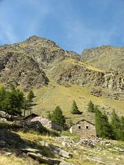 Cogne_031_Valnontey_Pascieux_08-15 (mi.da_me) Tags: parco nazionale gran paradiso cogne alpeggi montagana rurale mountainsnaps