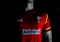 Welsh Rugby (Willers1404) Tags: world camera light red colour cup sports monochrome sport shirt wales one nikon key rugby low feathers off replica selected kit admiral 900 strobe meike strobist d7100