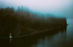 Trees / Fog (Atmospherics) Tags: autumn mist canada fog vancouver moody bc traintracks seawall northshore stanleypark prospectpoint tonal textural atmospherics nikon80200f28 nikond600 vancouverfall bcfall mistintrees