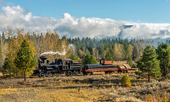 At home in the Oregon Woods (kdmadore) Tags: railroad oregon train steam sumpter steamlocomotive mcewen sumptervalleyrailway svrr svry sumptervalleyrailroad