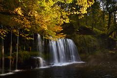 Sgwd ddwli (chrisduncash) Tags: autumn colour water wales river landscape waterfall valley cascade neath neddfechan sgwdddwli