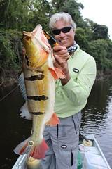 Amazonia 2012 (76)