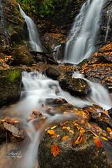 Soco Falls, NC (Avisek Choudhury) Tags: longexposure autumn waterfall nc fallcolor northcarolina gitzo nikond800 socofalls avisekchoudhury acratechballhead nikon1635mm avisekchoudhuryphotography