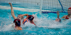 PB280661 (roel.ubels) Tags: sport bears ede polar waterpolo eredivisie 2015 topsport depeppel uzsc