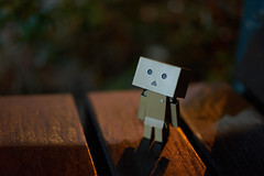 (yiming1218) Tags: moon toy  danbo danboard