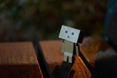 (yiming1218) Tags: moon toy  danbo danboard