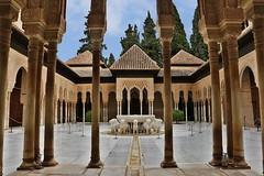 Patio de los Leones, Alhambra - Granada (iqipen) Tags: spain arches patio alhambra granada andalusia spagna leones