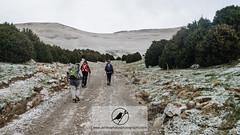 ACR_4423.jpg (Acrocephalus Photography) Tags: autumn mountain mountains fall trekking outdoors spain hiking catalonia catalunya es esp pyrenees pirineus ripolls ogassa catalunyaexperience incostabrava
