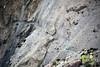 Trek To Shimshal Pass (Fareed Gujjar - Next Mount Everest April 14) Tags: autumn pakistan lake beautiful scenery north hunza farid pamir fareed ghizer skardu phandar gupis mashabrum shimshalpass faridgujjar fareedgujjar mangliksar northeran