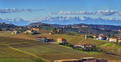 Piedmont in autumn (8000k views) (Fil.ippo) Tags: italy mountain alps landscape wine piedmont hdr filippo wineyard langhe monferrato canelli d7000 filippobianchi
