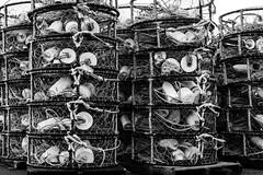 pots on pallets (alex1derr) Tags: tower oregon fishing crab rope stack pile newport oregoncoast trap buoy array crabbing yaquinabay