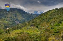 nurkowanie-travel-pl-116.jpg (www.nurkowanie.travel.pl) Tags: indonesia places papua baliem